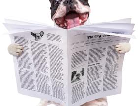 print advertising